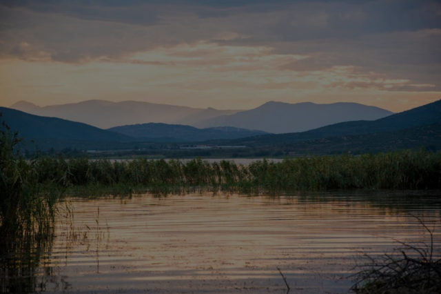 Enhancing Dojran Lake Unique Biodiversity through Engagement of all Stakeholders and Implementation of Ecosystem – Based Approaches